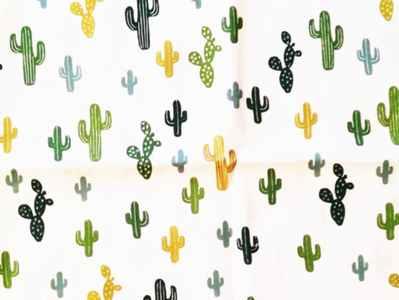 Cactus verdes