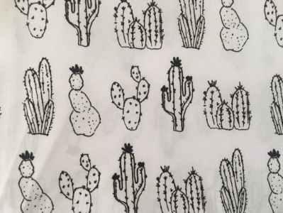 Desierto Cactus